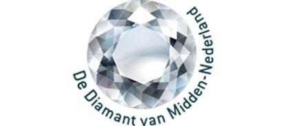 Logo De diamant van midden Nederland